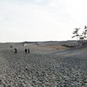 夏に行きたい中田島砂丘