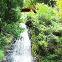夏に行きたい五宝の滝