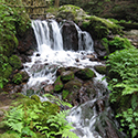 夏に行きたい瓜割の滝