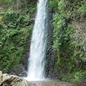 夏に行きたい養老の滝