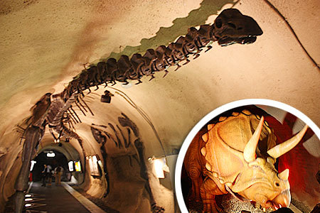 地球回廊恐竜の模型