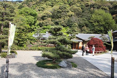 岐阜公園信長の庭