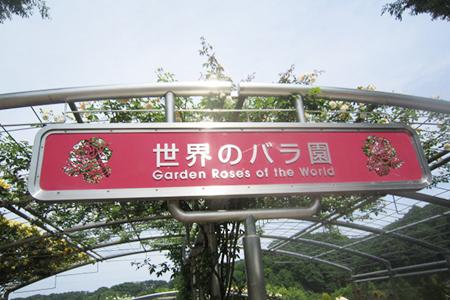 花フェスタ記念公園入り口