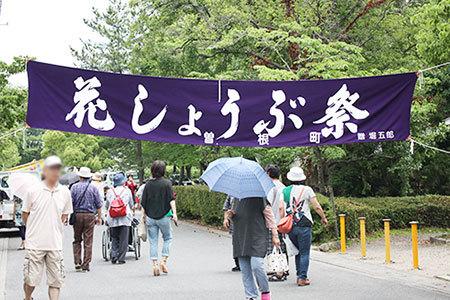 曽根城花しょうぶ祭り
