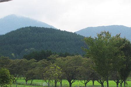 中津川ふれあい牧場