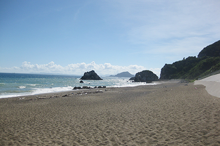 ココナッツビーチ