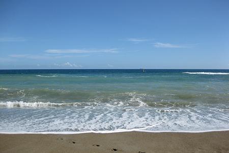 ココナッツビーチのきれいな海