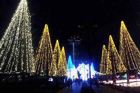 木曽三川公園センターのイルミネーションg