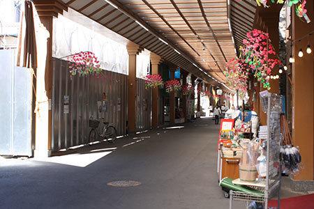 桑名商店街河津桜