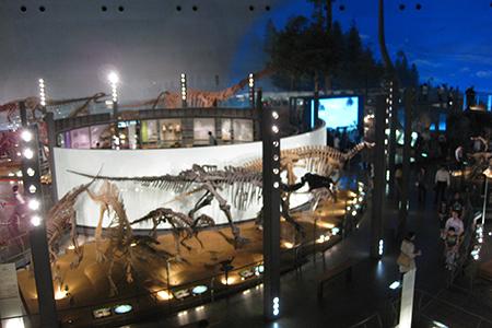恐竜博物館施設内