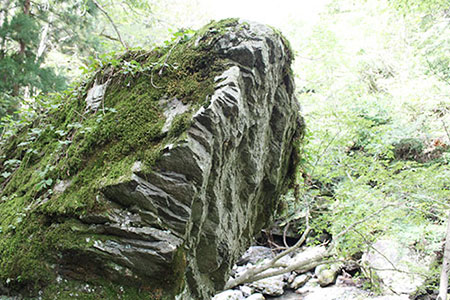 郡上夫婦岩