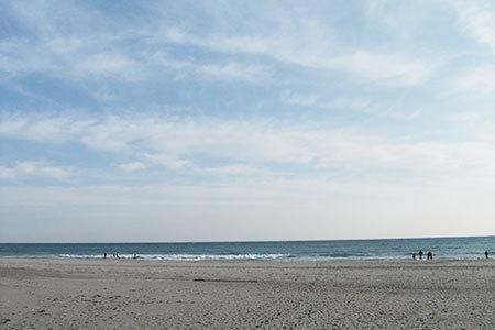中田島砂丘海