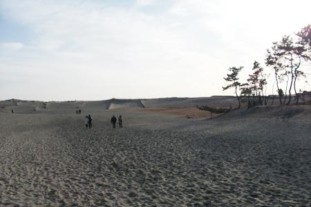 中田島砂丘デート