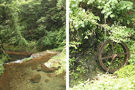 釜ヶ滝滝茶屋の自然