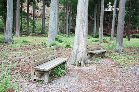 谷汲緑地公園キャンプ場