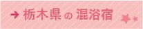 栃木県の混浴ができる宿