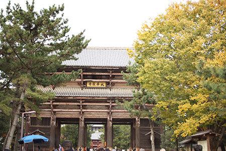 奈良公園から東大寺へ