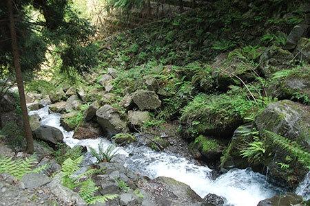 養老の滝小川